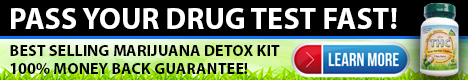 pass your drug test fast web ad about the best selling marijuana detox kit with a 100% money back guarantee