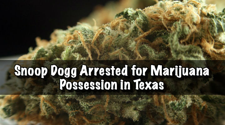 THEY GOT SNOOP Snoop Dogg Arrested for Marijuana Possession in Texas