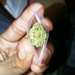 beautiful weed in a bag
