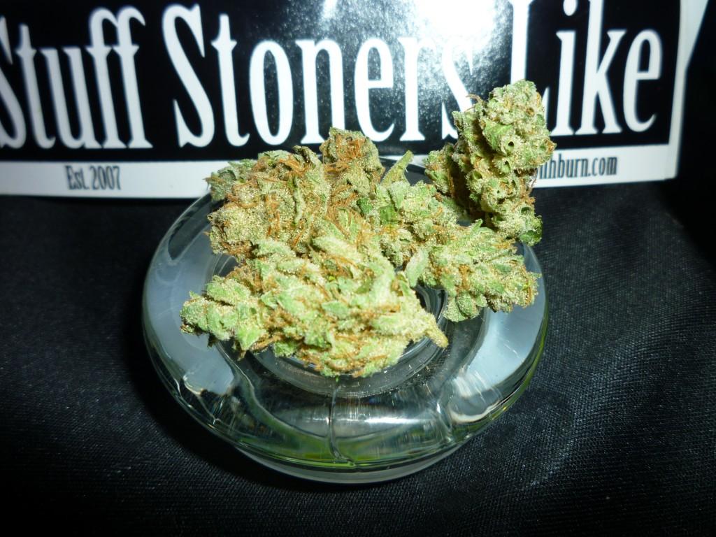 Star Dawg Marijuana Strain 3