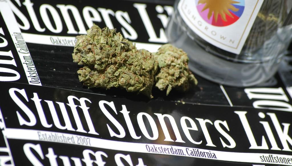 Thin Mint Cookies Marijuana Strain