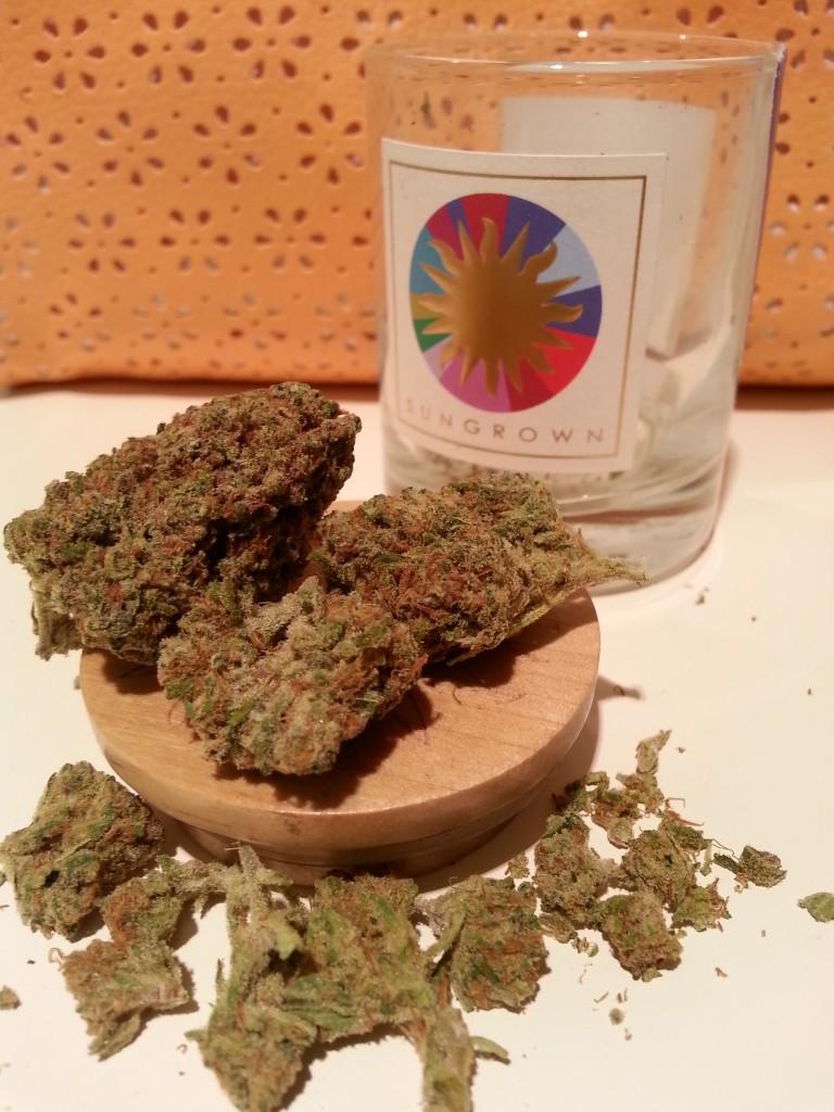 Thin Mint Cookies Marijuana Strain Review