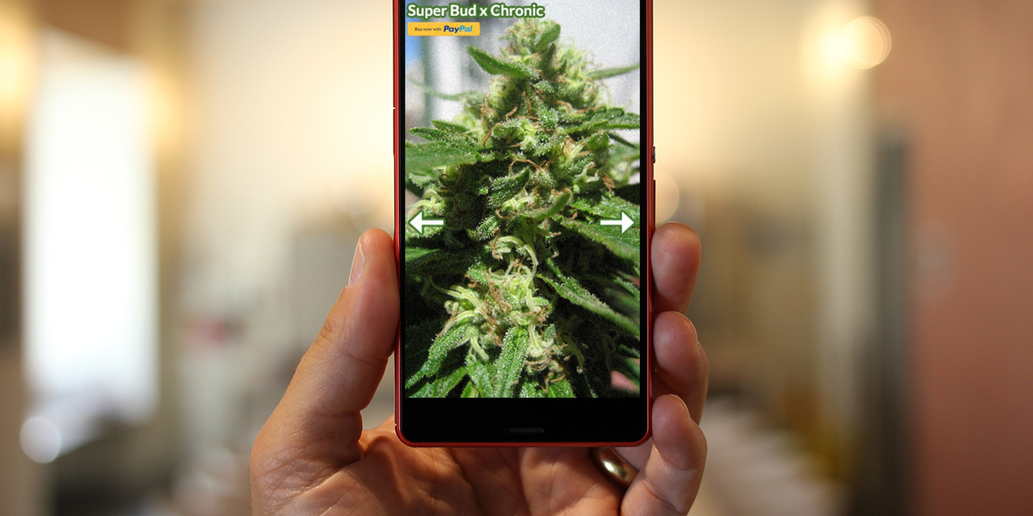 Until theres a weed leaf emoji here are 5 weed symbols on your phone biocorpaavc Images