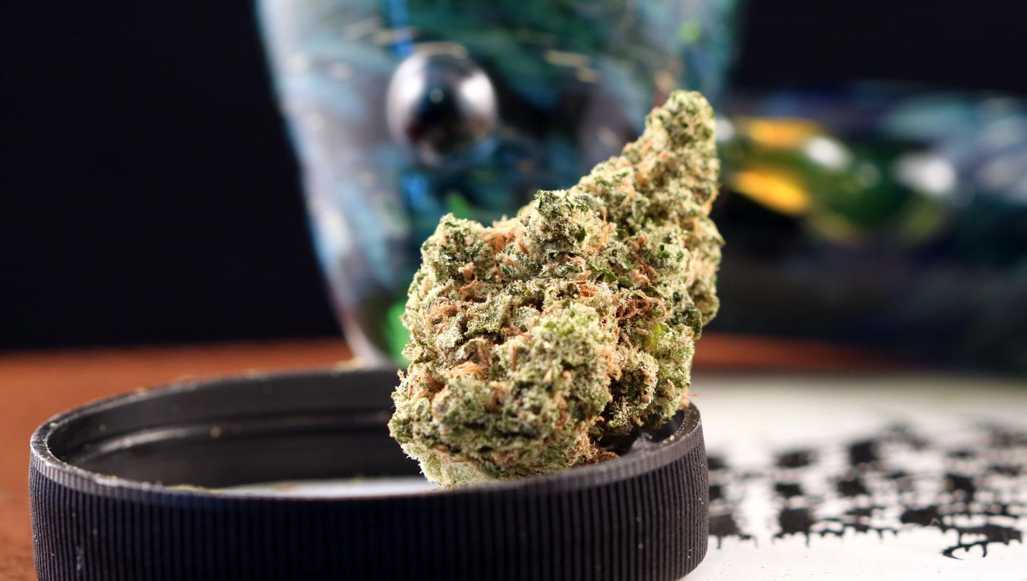 Orange Fruity Pebbles Marijuana Strain