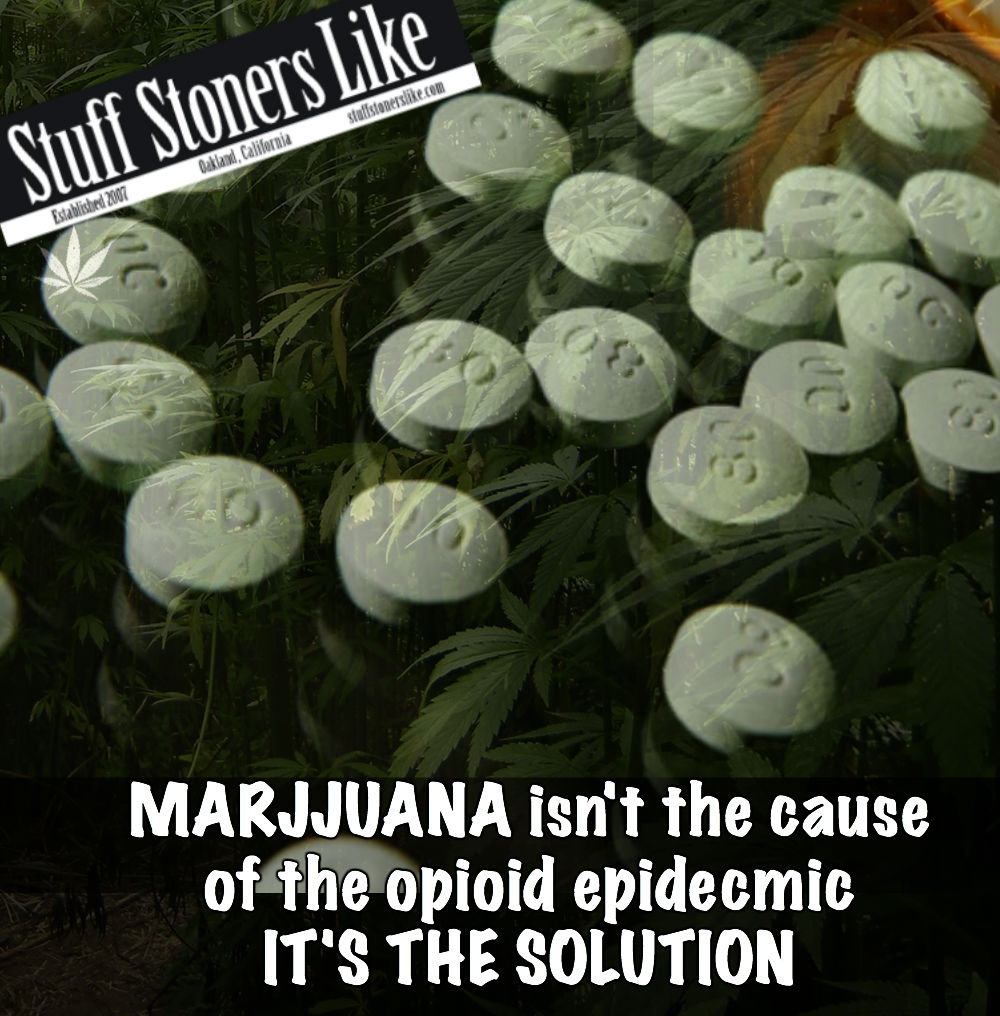 MARIJUANA isn't the cause of the OPIOID epidemic it's the solution