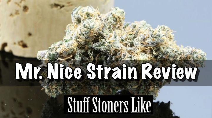 mr nice strain