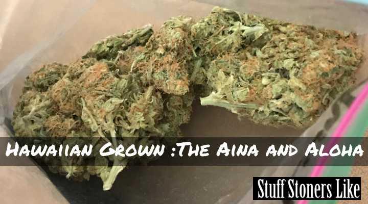 Hawaiian Grown 4