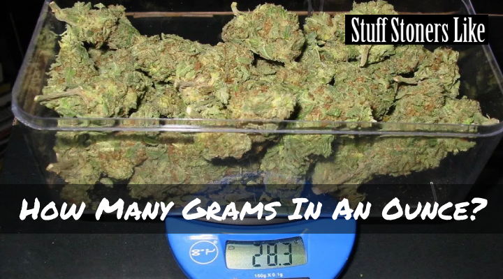 How many grams in an ounce of weed? Don't laugh, dude. Sure you think this is a rookie question. We're here to answer it.