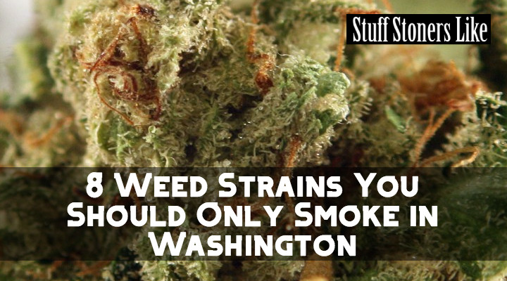 If you're traveling through Washington check out this weed