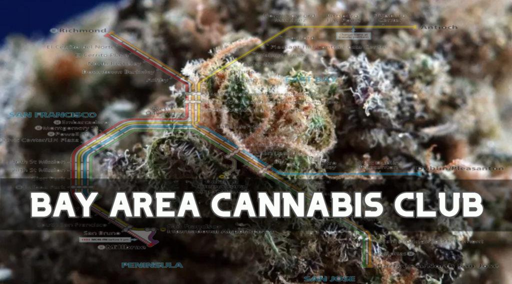 Bay Area Cannabis Club