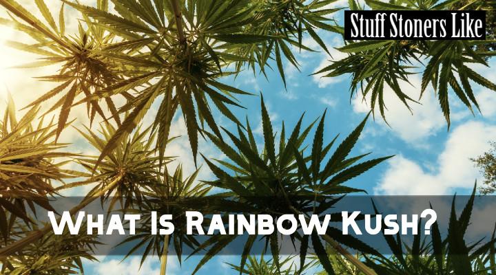 What is Rainbow Kush