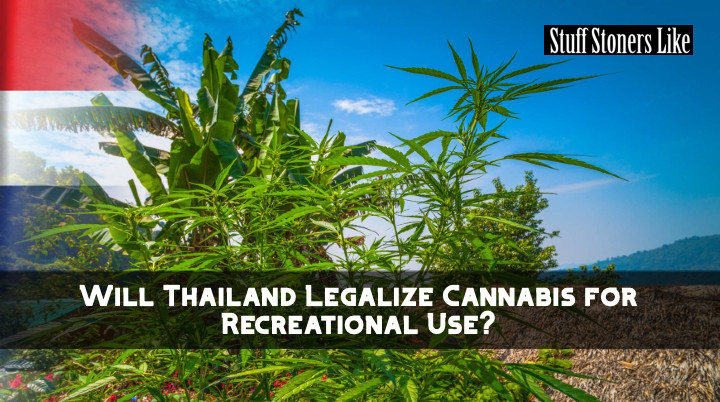 Thailand weed